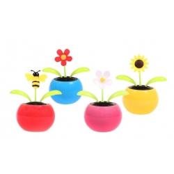 Mini táncoló napvirágok
